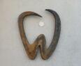 Kované logo zub